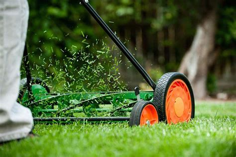 Month-by-Month Care Calendar for Warm-Season Lawns