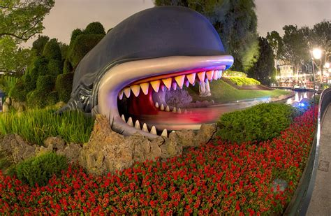 Planting the Magic – A Look at Disneyland Horticulture