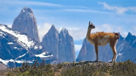 Argentina Facts for Kids | Geography | Attractions