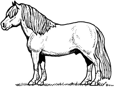 Horse Coloring Pages - GetColoringPages