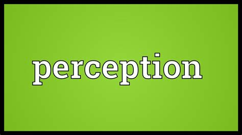 Perception Meaning - YouTube